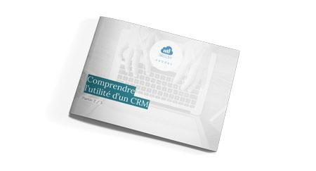 Ebook CRM 2